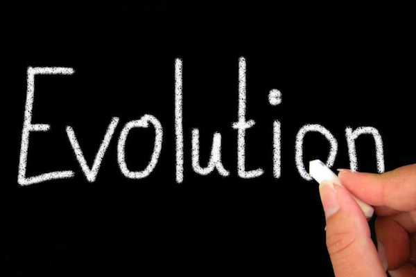 Fluency Friday | Evolution – Part I